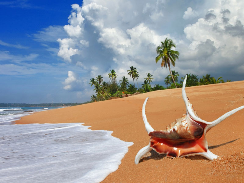 Bentota Top 10 places to visit in sri lanka in june