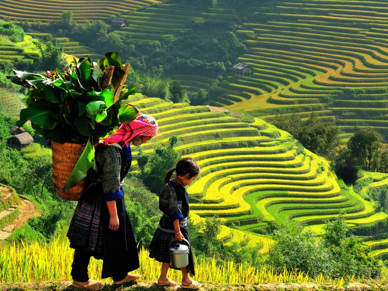sapa best places to see in vietnam