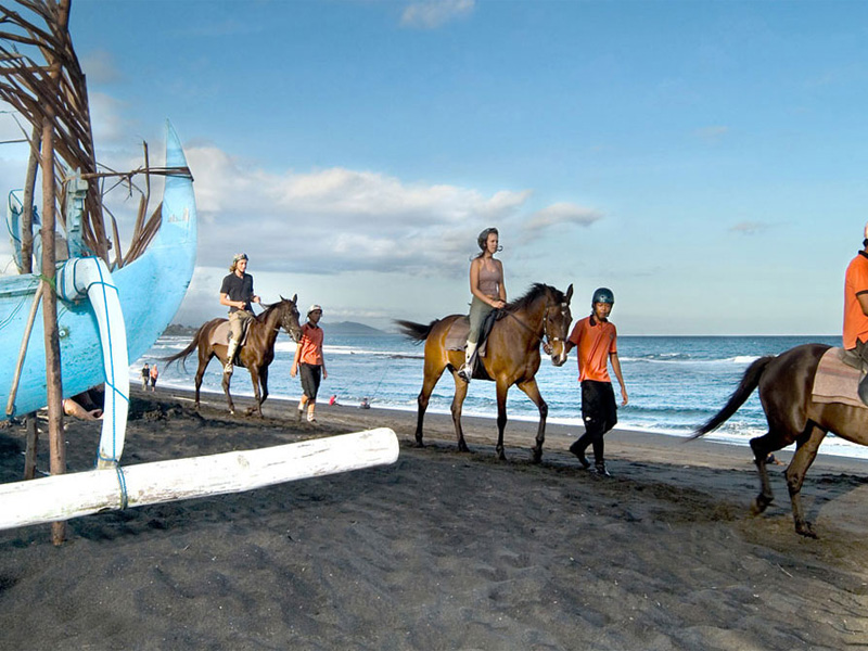Go horse Top 20 Things to Do in Bali Indonesia