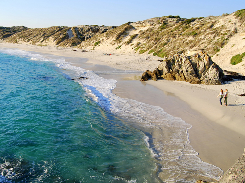 Grootbos Western Cape Top 14 Honeymoon Destinations in South Africa