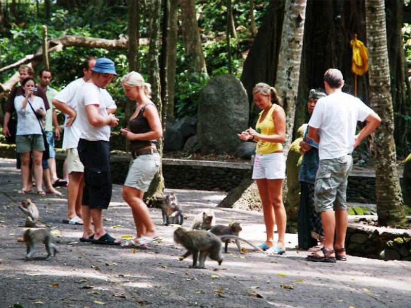 Monkey Forest Road Top 20 Things to Do in Bali Indonesia