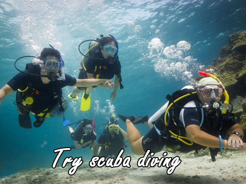 Try scuba Top 20 Things to Do in Bali Indonesia