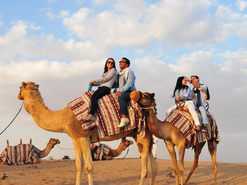 arabian desert safari top 14 honeymoon destination in dubai