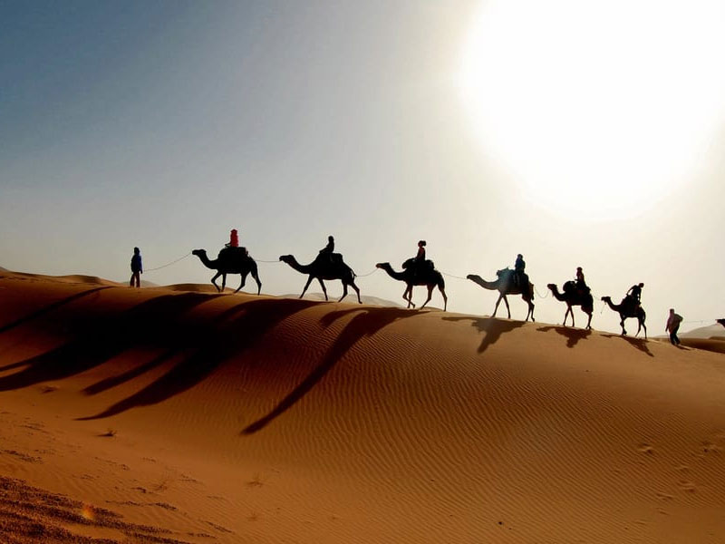 Desert Safari best ways to celebrate new year in dubai