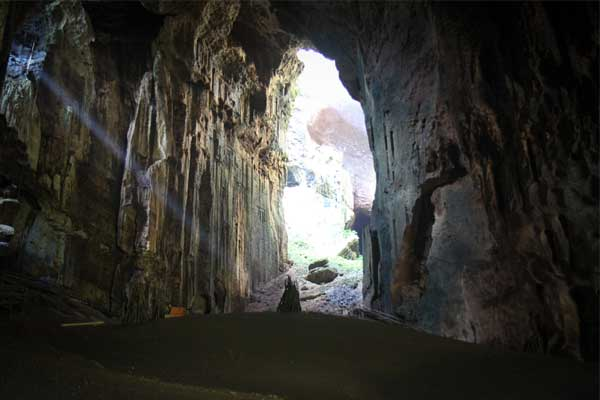 Gomantong Caves 10 places to visit in Sabah Malaysia