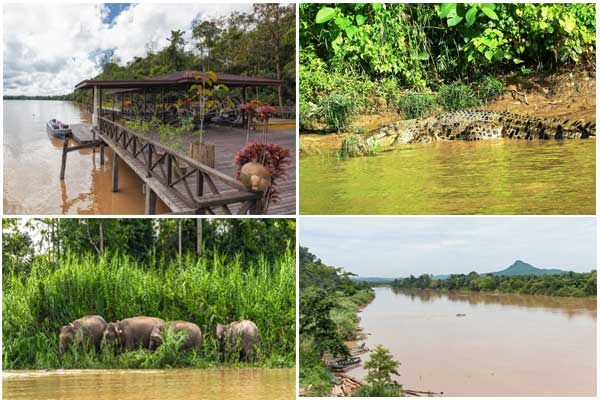 The Kinabatangan River 10 places to visit in Sabah Malaysia